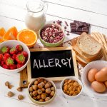 Allergy Explained in Human Language