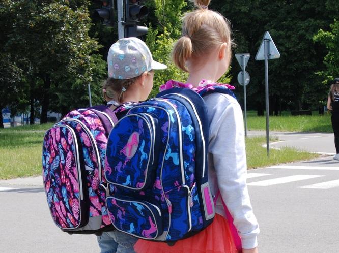 Ergonomic School Backpacks